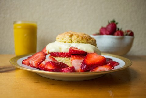 Shortcake Photo